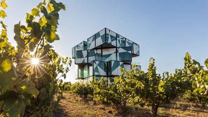 d'Arenberg Cube and vines